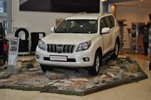 Депутаты наведут порядок в автомобильной рекламе, фото 2