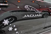 Chery и JaguarLandRover объединят свои подразделения, фото 2