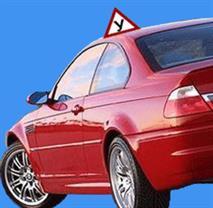 На следующей неделе появятся новые водительские права, фото 1