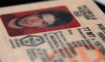 Введены водительские удостоверения нового образца, фото 1