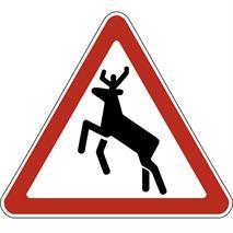 Дорожные знаки, фото 26