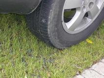 Штрафы за парковку на газонах увеличили до 5 тыс. рублей, фото 1