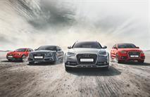 У Audi появился новый дилер в России, фото 1