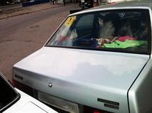 Плохие автошколы начнут выявлять по ДТП, фото 1
