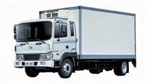 Российский дистрибутор грузовиков Hyundai обанкротился, фото 1
