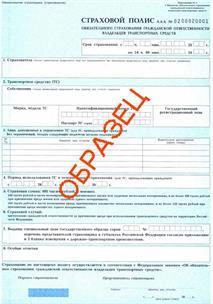 Мошенница продала фальшивых полисов ОСАГО на 1 млн. рублей, фото 1