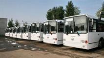 Водители рейсовых автобусов добиваются выдачи зарплаты голодовкой, фото 1