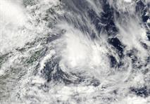 МЧС предупреждает о возможном ураганном ветре в Московской области, фото 1