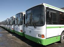 Столичный наземный транспорт реформируют, фото 1