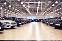 В России сократился ассортимент новых машин, фото 1