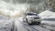 В России подешевели Subaru Forester и Outback, фото 1