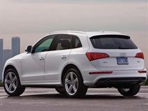 В РФ отзывают Audi Q5 из-за протекающей крыши, фото 1
