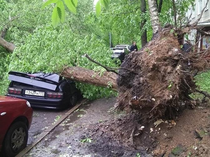 Москвичей попросили отказаться от автомобилей из-за новой бури, фото 2