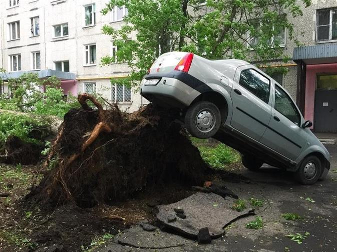 Москвичей попросили отказаться от автомобилей из-за новой бури, фото 4