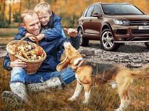Проверка вашего Volkswagen по специальной цене