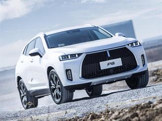 Great Wall привезет в РФ новые авто для молодежи и любителей роскоши