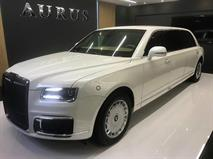 Российский министр объявил цену лимузина Aurus, фото 1